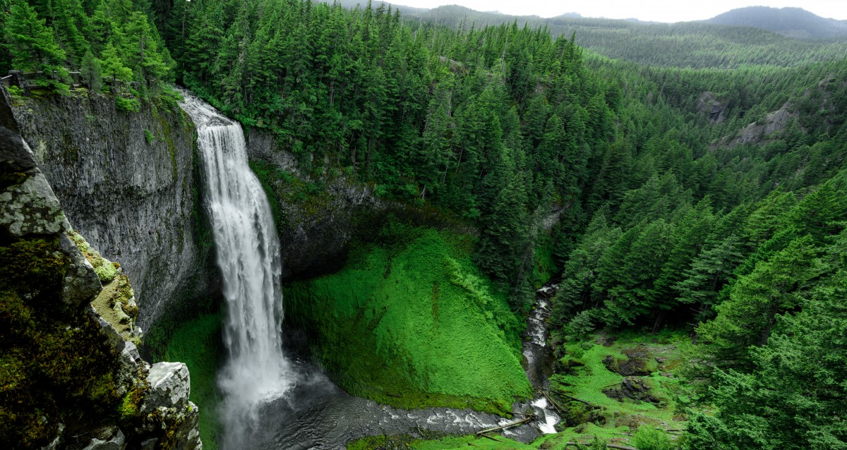 Hutan Arlok - Petualangan Awan bagian V