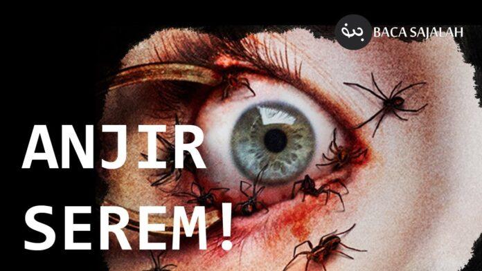 7 Fobia Aneh yang Secara Menyeramkan Bisa Mengancam Nyawa