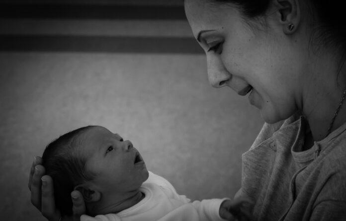 Cerpen Misteri: Mitos Ibu Hamil dan Hewan